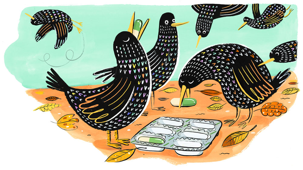 starlings_final